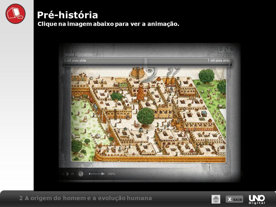 X SAIR Clique na imagem abaixo para ver a animação. Pré-história 2 A origem do homem e a evolução humana