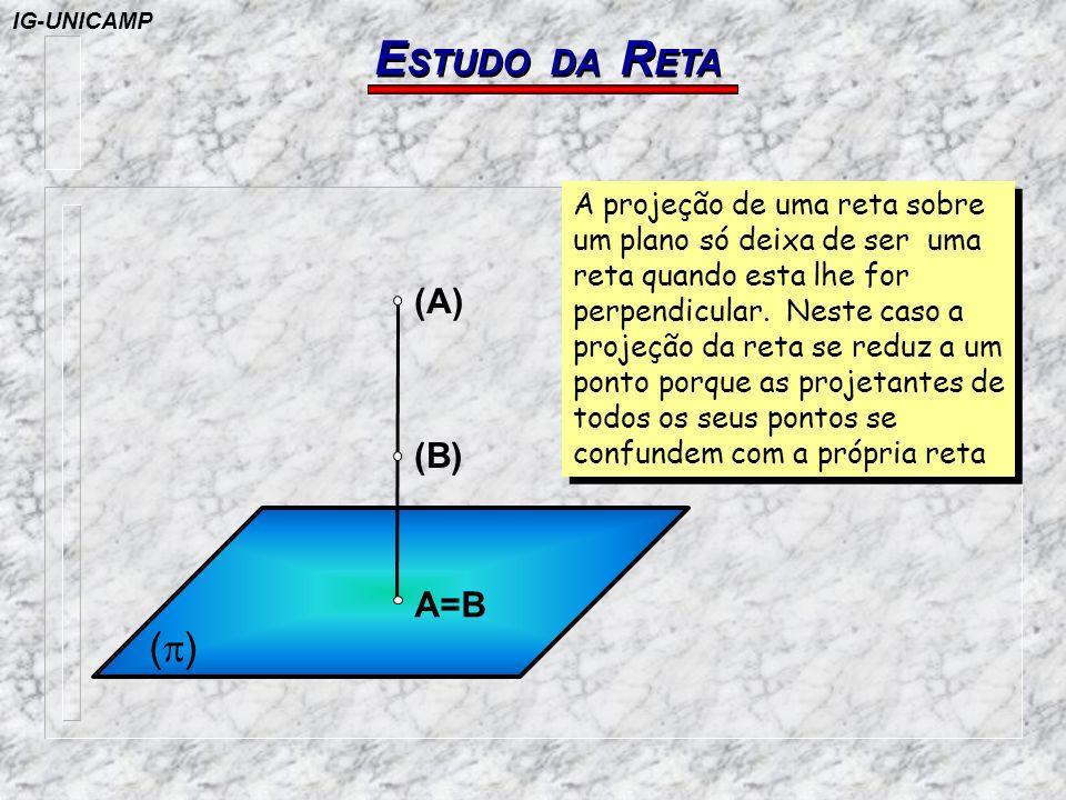 E STUDO DA R ETA A=B (B) (A) ( ) A projeção de uma reta sobre um plano só deixa de ser uma reta quando esta lhe for perpendicular. Neste caso a projeç