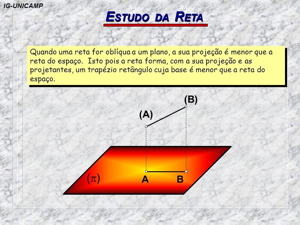 E STUDO DA R ETA ( ) (A) (B) (B 4 ) (B 3 ) (B 2 ) (B 1 ) A=B B1B1 B2B2 B3B3 B4B4 O comprimento da projeção de uma reta sobre um plano varia com a inclinação desta em relação ao plano.