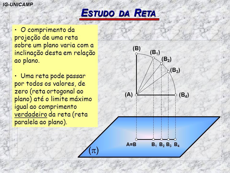 E STUDO DA R ETA ( ) (A) (B) (B 4 ) (B 3 ) (B 2 ) (B 1 ) A=B B1B1 B2B2 B3B3 B4B4 Seja a reta (A)(B) perpendicular ao plano Suponha que a reta girando em torno de (A) ocupe as posições (A)(B 1 ),...(A)(B 3 ), etc, cujas projeções no plano (p) são respectivamente AB, AB 1, AB 2, etc.