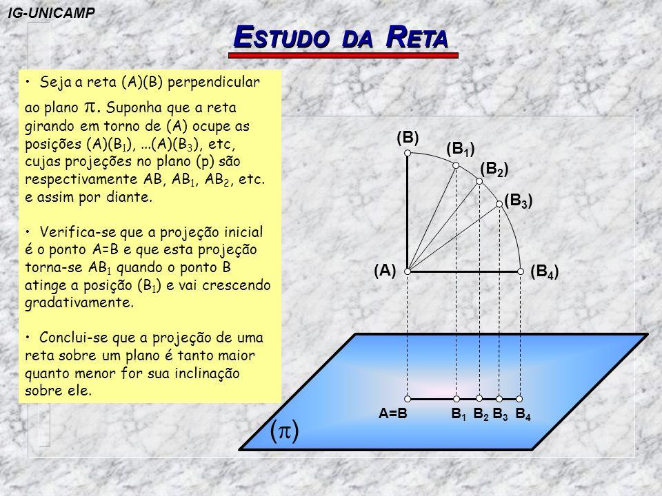 P OSIÇÕES DA R ETA Reta situada no ( A ) ( P ) ( S ) ( A ) (A) = A (B) = B B A ( I ) A reta coincide com a sua própria projeção horizontal.