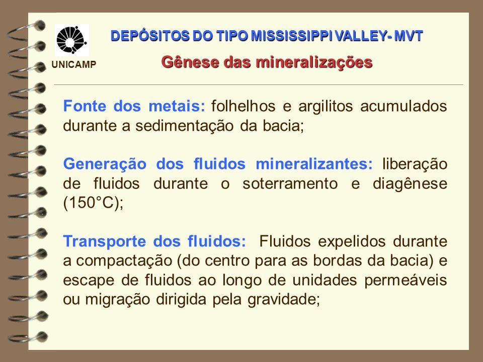UNICAMP Fonte dos metais: folhelhos e argilitos acumulados durante a sedimentação da bacia; Generação dos fluidos mineralizantes: liberação de fluidos