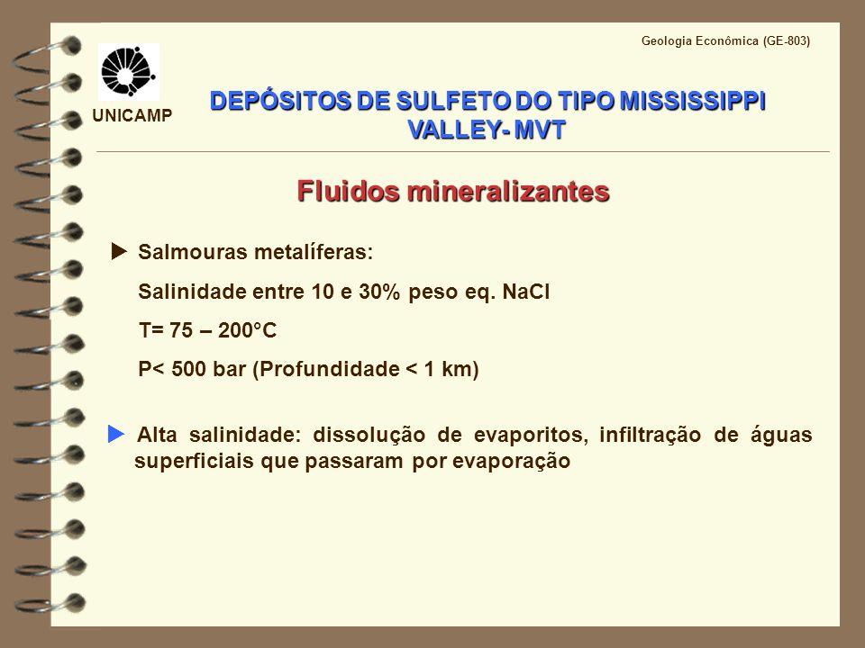 UNICAMP Geologia Econômica (GE-803) DEPÓSITOS DE SULFETO DO TIPO MISSISSIPPI VALLEY- MVT Salmouras metalíferas: Salinidade entre 10 e 30% peso eq. NaC
