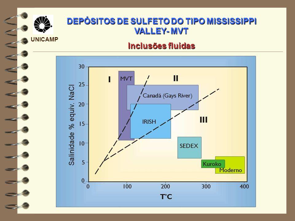 UNICAMP DEPÓSITOS DE SULFETO DO TIPO MISSISSIPPI VALLEY- MVT Inclusões fluidas