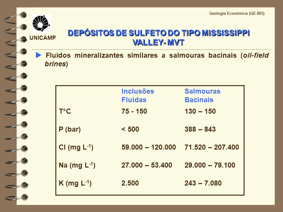 Inclusões Fluidas Salmouras Bacinais T°C75 - 150130 – 150 P (bar)< 500388 – 843 Cl (mg L -1 )59.000 – 120.00071.520 – 207.400 Na (mg L -1 )27.000 – 53