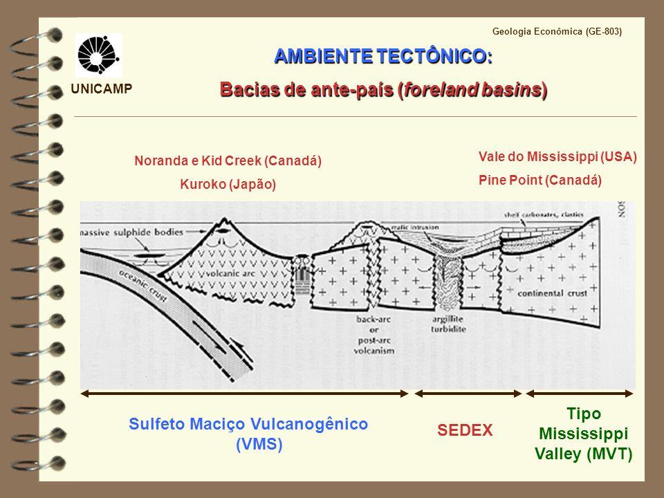 UNICAMP Geologia Econômica (GE-803) AMBIENTE TECTÔNICO: Bacias de ante-país (foreland basins) Sulfeto Maciço Vulcanogênico (VMS) Tipo Mississippi Vall