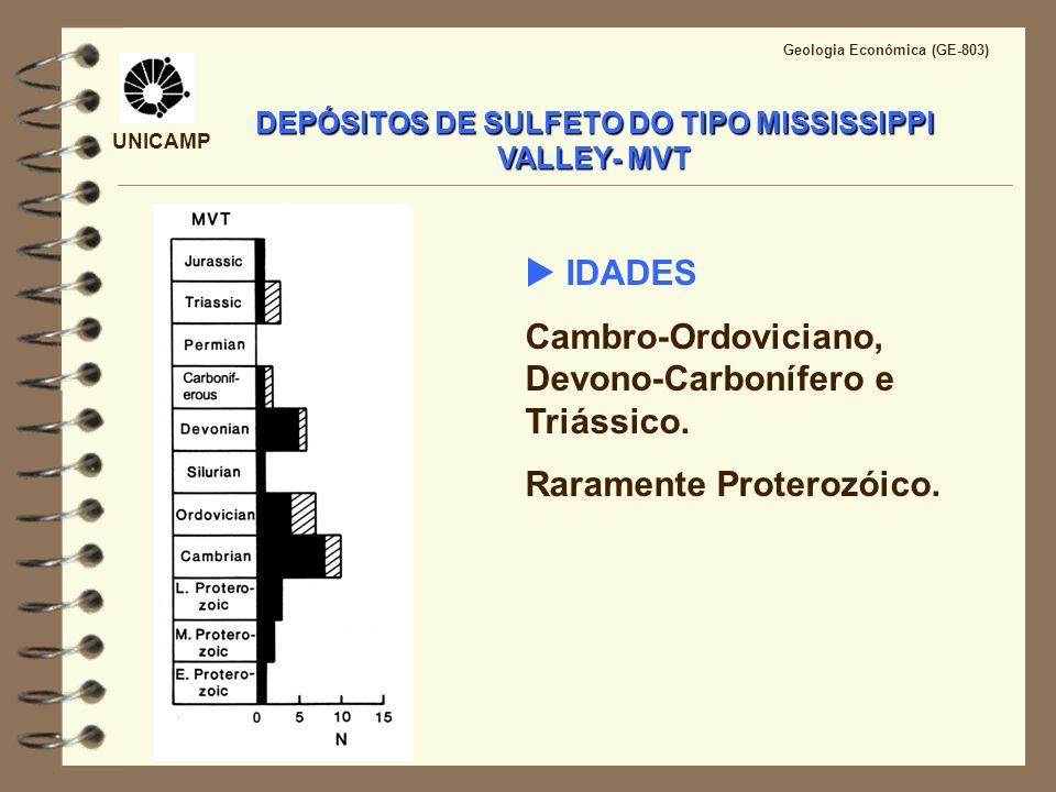 UNICAMP Fonte dos metais: folhelhos e argilitos acumulados durante a sedimentação da bacia; Generação dos fluidos mineralizantes: liberação de fluidos durante o soterramento e diagênese (150°C); Transporte dos fluidos: Fluidos expelidos durante a compactação (do centro para as bordas da bacia) e escape de fluidos ao longo de unidades permeáveis ou migração dirigida pela gravidade; DEPÓSITOS DO TIPO MISSISSIPPI VALLEY- MVT Gênese das mineralizações
