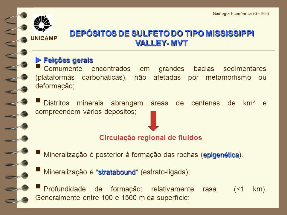 UNICAMP Geologia Econômica (GE-803) Feições gerais Feições gerais Comumente encontrados em grandes bacias sedimentares (plataformas carbonáticas), não