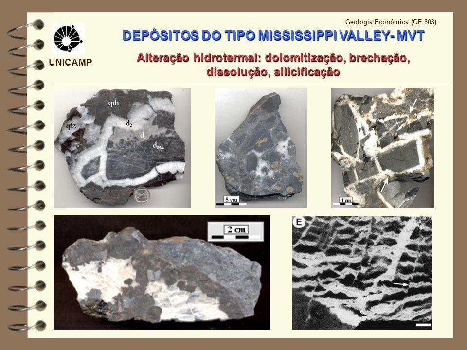 Inclusões Fluidas Salmouras Bacinais T°C75 - 150130 – 150 P (bar)< 500388 – 843 Cl (mg L -1 )59.000 – 120.00071.520 – 207.400 Na (mg L -1 )27.000 – 53.40029.000 – 79.100 K (mg L -1 )2.500243 – 7.080 UNICAMP Geologia Econômica (GE-803) DEPÓSITOS DE SULFETO DO TIPO MISSISSIPPI VALLEY- MVT Fluidos mineralizantes similares a salmouras bacinais (oil-field brines)