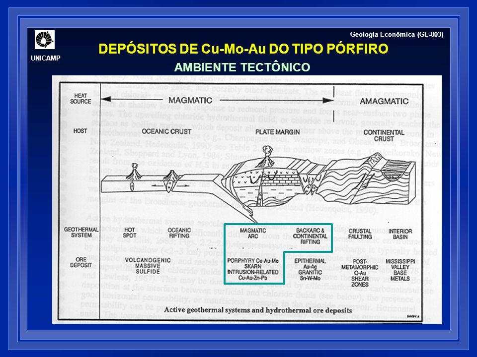 UNICAMP Geologia Econômica (GE-803) DEPÓSITOS DE Cu - Mo - Au DO TIPO PÓRFIRO MODELOS GENÉTICOS: FLUIDO MAGMÁTICO VS.