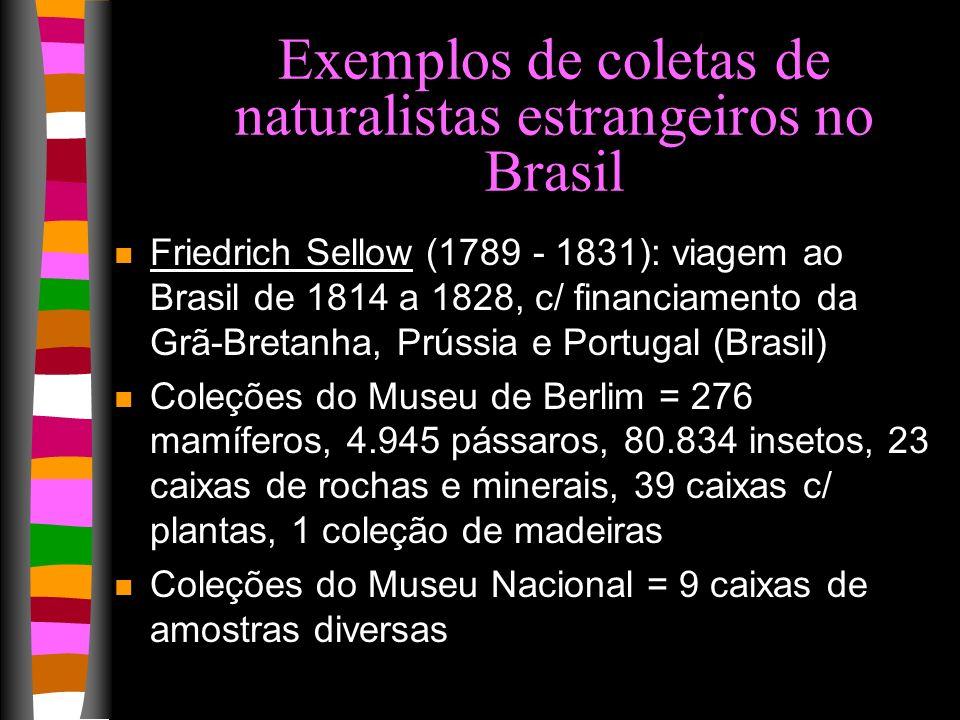 Exemplos de coletas de naturalistas estrangeiros no Brasil n Friedrich Sellow (1789 - 1831): viagem ao Brasil de 1814 a 1828, c/ financiamento da Grã-