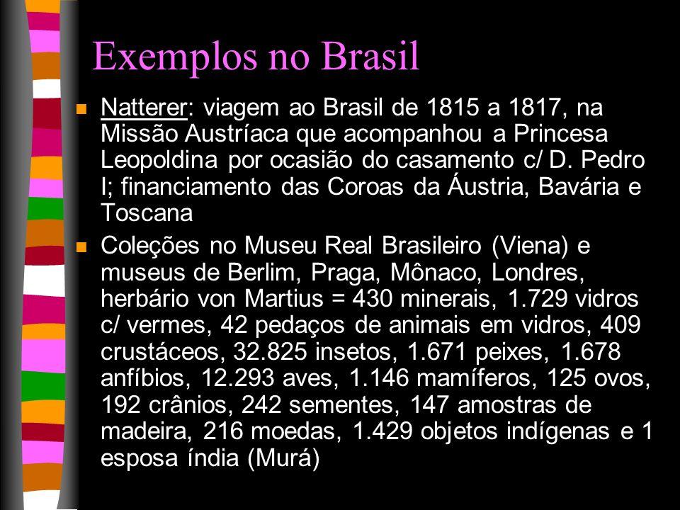 Exemplos no Brasil n Natterer: viagem ao Brasil de 1815 a 1817, na Missão Austríaca que acompanhou a Princesa Leopoldina por ocasião do casamento c/ D