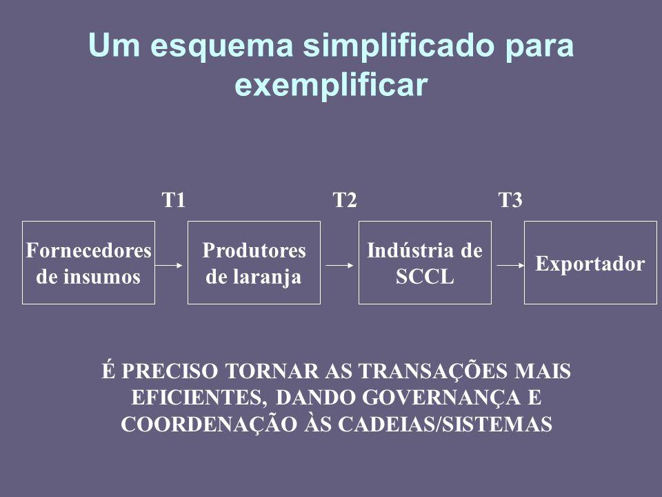 Um esquema simplificado para exemplificar Fornecedores de insumos Produtores de laranja Indústria de SCCL Exportador T1T3T2 É PRECISO TORNAR AS TRANSA