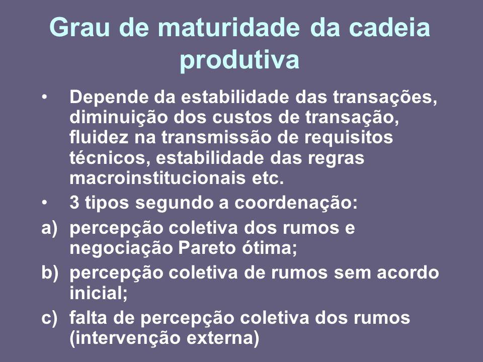 Grau de maturidade da cadeia produtiva Depende da estabilidade das transações, diminuição dos custos de transação, fluidez na transmissão de requisito