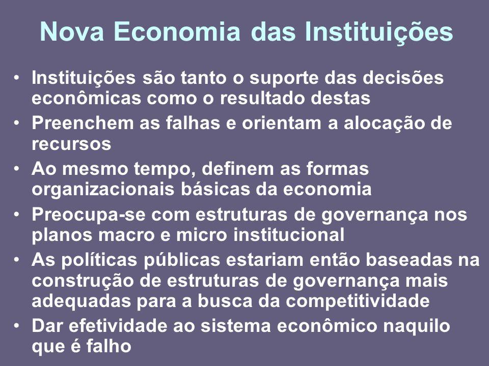 Nova Economia das Instituições Instituições são tanto o suporte das decisões econômicas como o resultado destas Preenchem as falhas e orientam a aloca