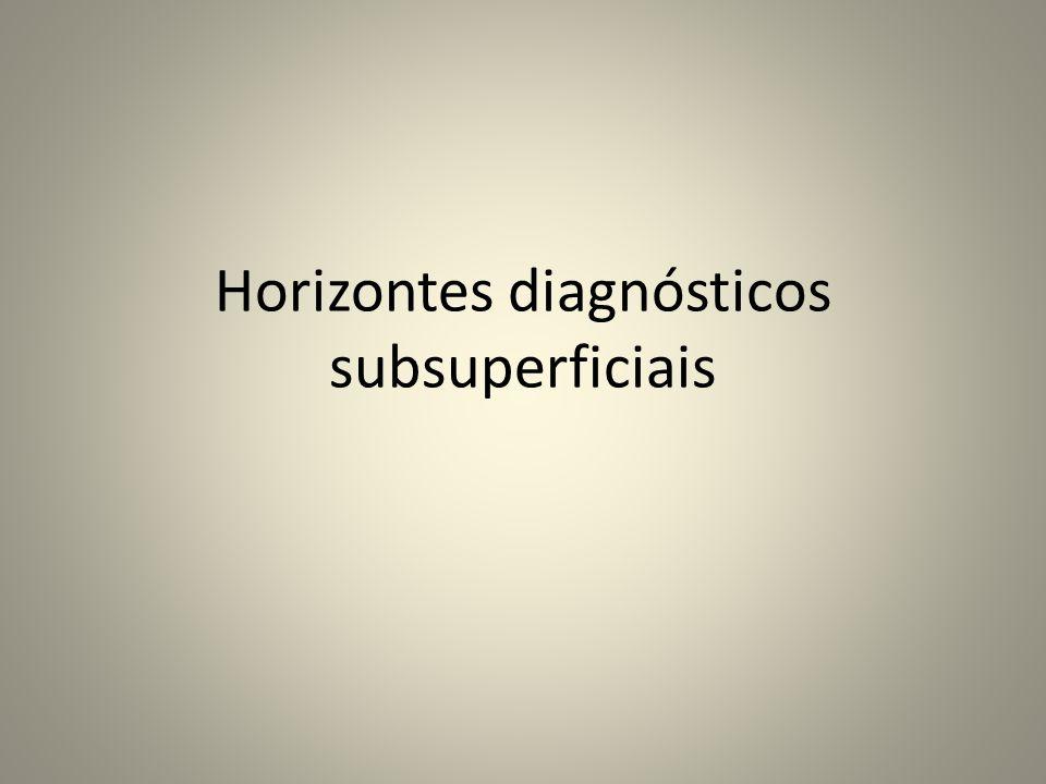 Horizontes diagnósticos subsuperficiais