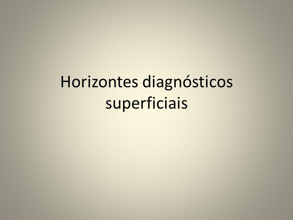 Horizontes diagnósticos superficiais