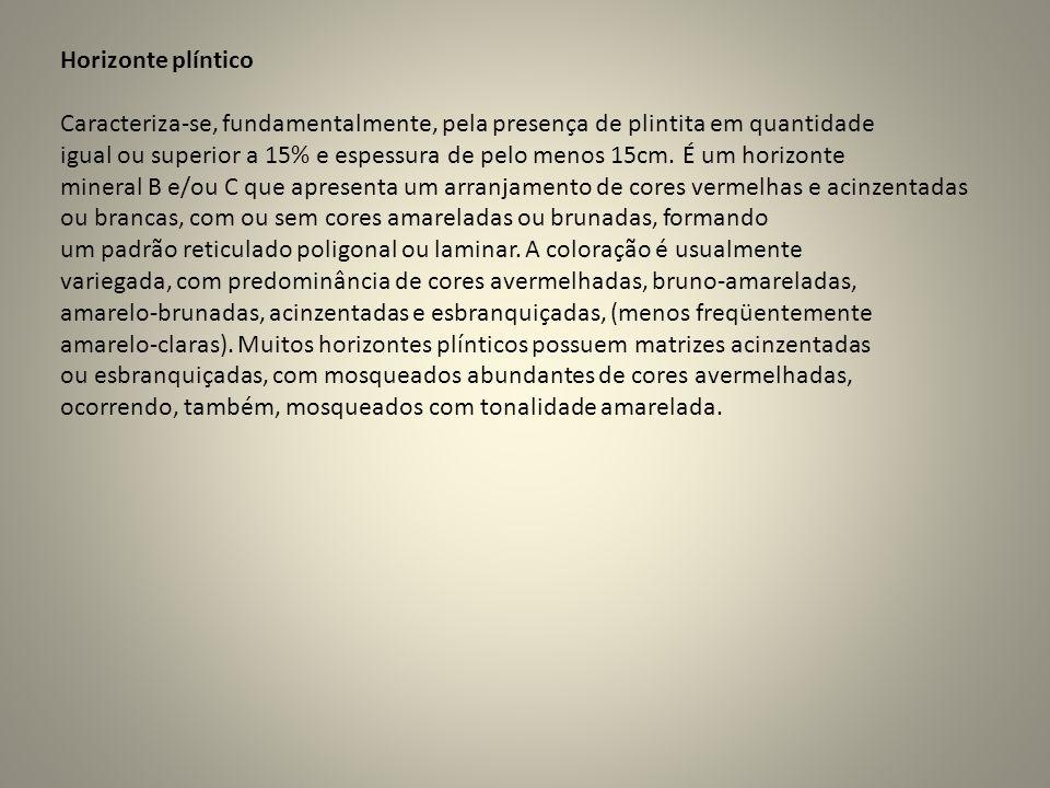 Horizonte plíntico Caracteriza-se, fundamentalmente, pela presença de plintita em quantidade igual ou superior a 15% e espessura de pelo menos 15cm. É