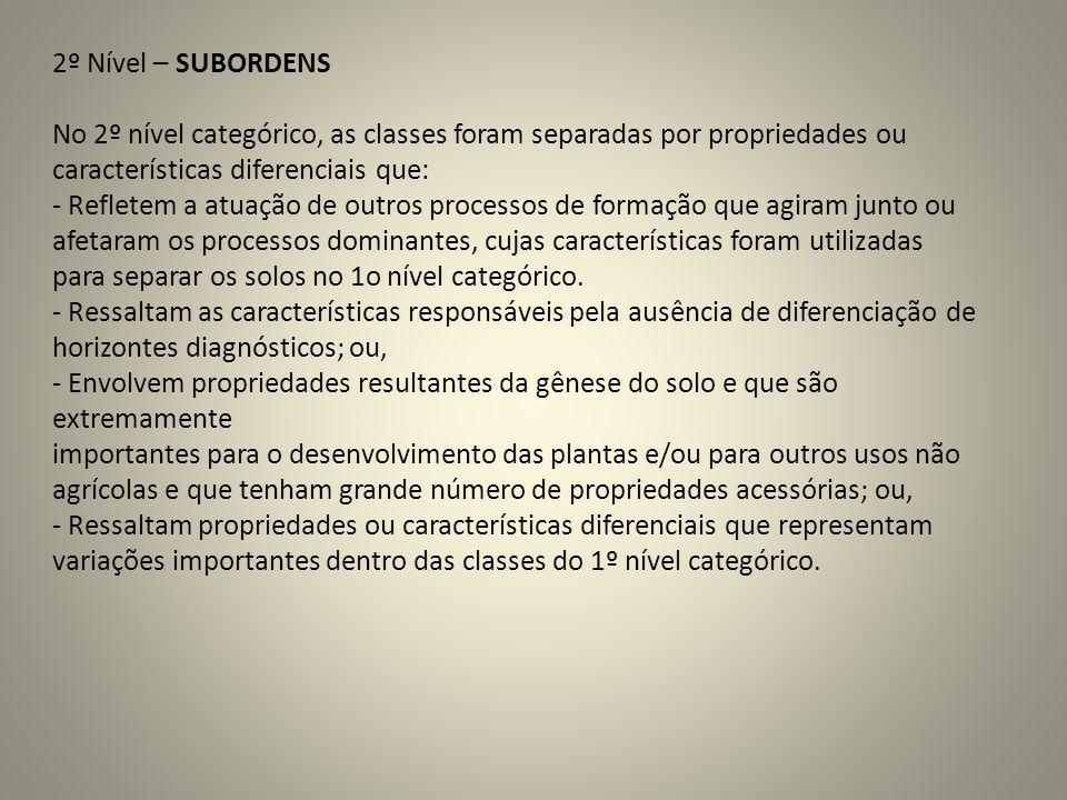 2º Nível – SUBORDENS No 2º nível categórico, as classes foram separadas por propriedades ou características diferenciais que: - Refletem a atuação de