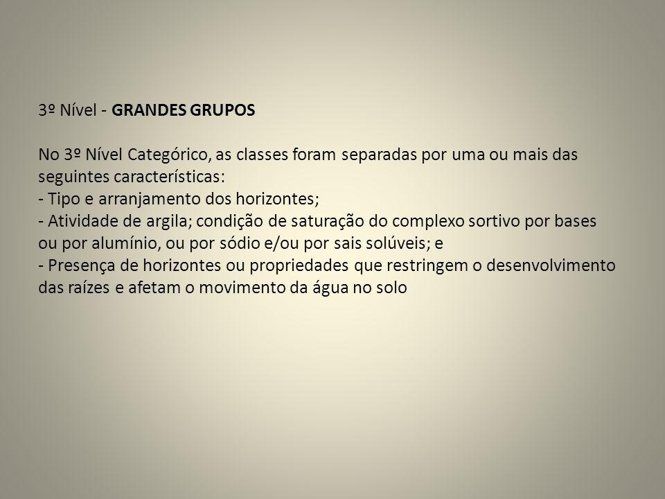3º Nível - GRANDES GRUPOS No 3º Nível Categórico, as classes foram separadas por uma ou mais das seguintes características: - Tipo e arranjamento dos