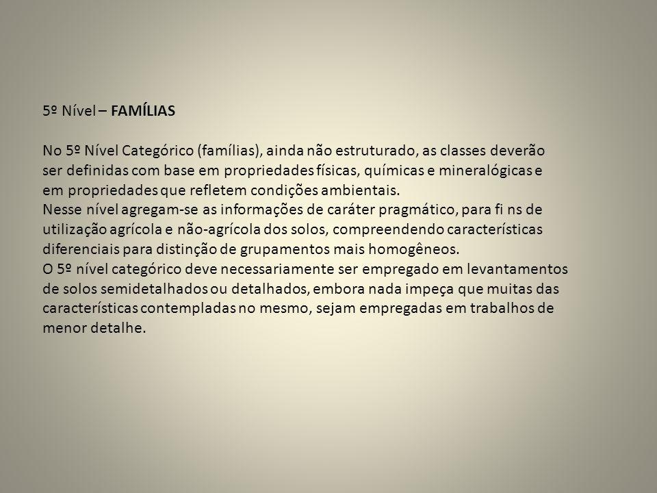 5º Nível – FAMÍLIAS No 5º Nível Categórico (famílias), ainda não estruturado, as classes deverão ser definidas com base em propriedades físicas, quími