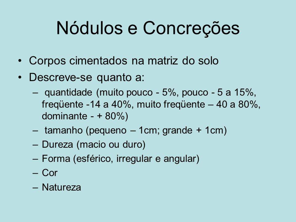 Nódulos e Concreções Corpos cimentados na matriz do solo Descreve-se quanto a: – quantidade (muito pouco - 5%, pouco - 5 a 15%, freqüente -14 a 40%, m