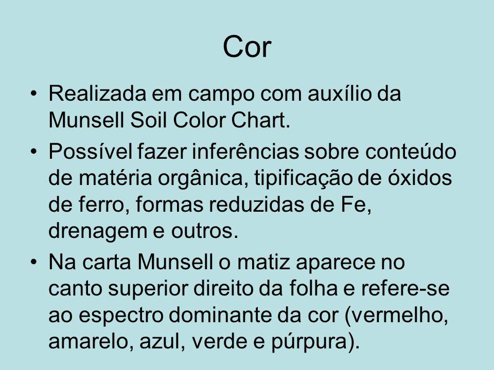 Cor Realizada em campo com auxílio da Munsell Soil Color Chart. Possível fazer inferências sobre conteúdo de matéria orgânica, tipificação de óxidos d