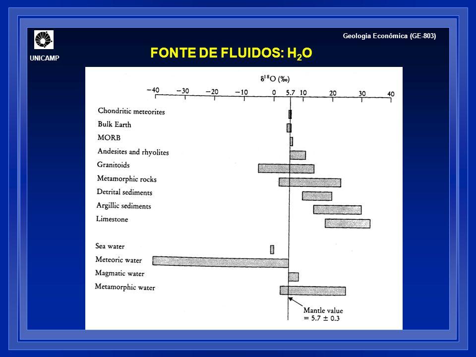 UNICAMP Geologia Econômica (GE-803) FONTE DE FLUIDOS: H 2 O