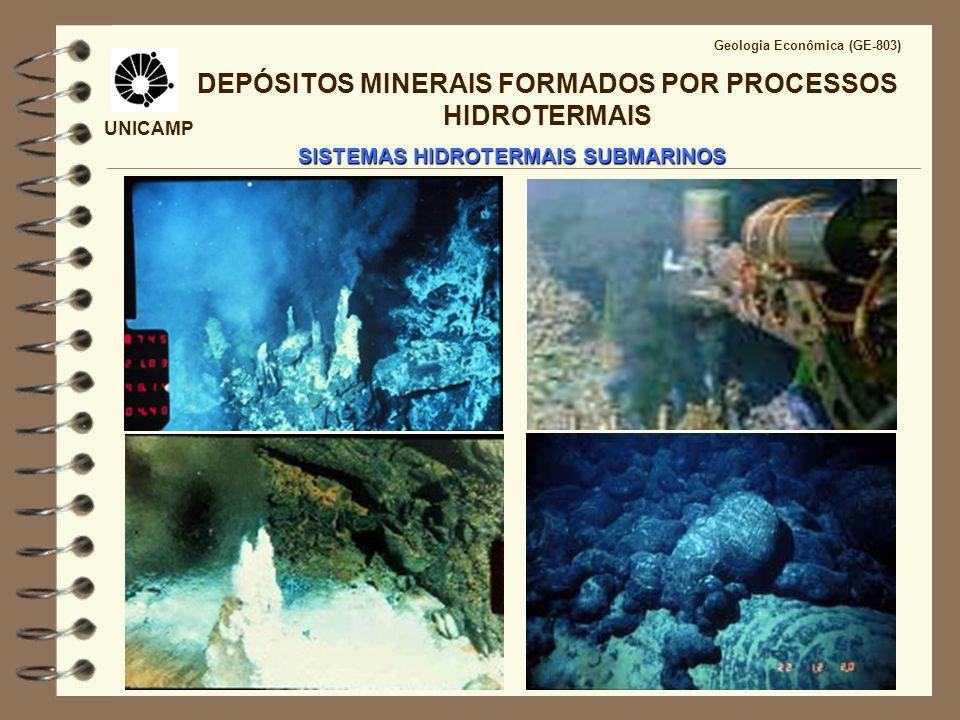 UNICAMP Geologia Econômica (GE-803) DEPÓSITOS MINERAIS FORMADOS POR PROCESSOS HIDROTERMAIS SISTEMAS HIDROTERMAIS SUBMARINOS http://www.pmel.noaa.gov/vents/chemocean.html
