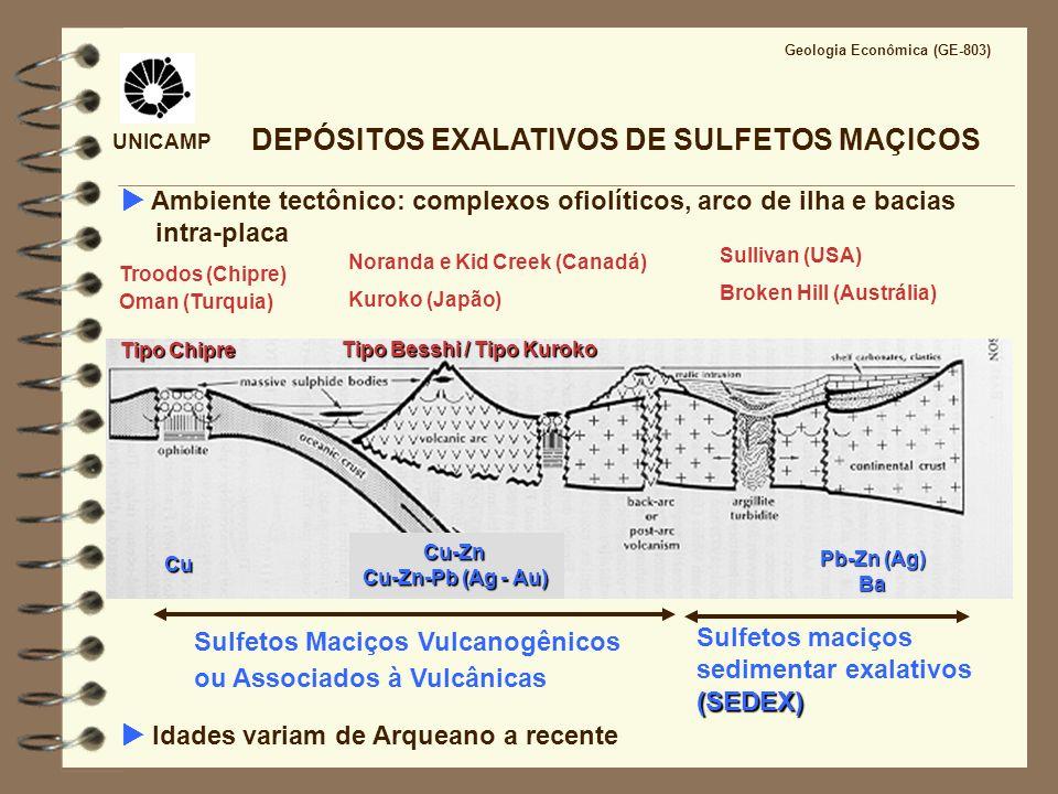 UNICAMP Geologia Econômica (GE-803) DEPÓSITOS MINERAIS FORMADOS POR PROCESSOS HIDROTERMAIS FLUIDOS EM SISTEMAS HIDROTERMAIS SUBMARINOS pH Mg 2+ SiO 2 H2SH2S