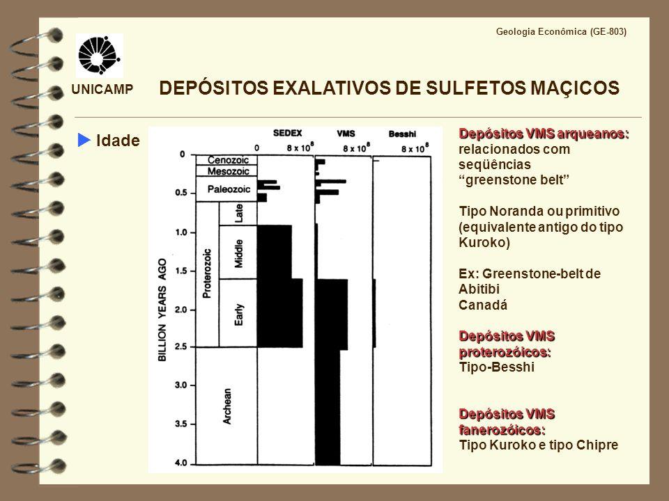UNICAMP Geologia Econômica (GE-803) CARACTERÍSTICAS DOS FLUIDOS SISTEMAS HIDROTERMAIS SUBMARINOS Soluções aquosas de salinidade 2 a 7 vezes a da H 2 O do mar (3,2 % em peso de NaCl) Soluções ácidas, com pH em torno de 3,5 Soluções redutoras H 2 S >> SO 4 2- T= 200 - 400°C Soluções empobrecidas em Mg 2+ Soluções enriquecidas em SiO 2, Ca 2+, Na +, metais base, Cl -