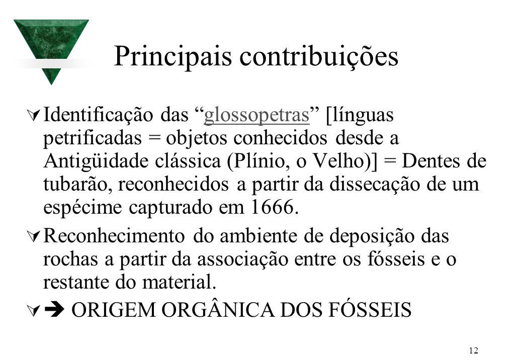 12 Principais contribuições Identificação das glossopetras [línguas petrificadas = objetos conhecidos desde a Antigüidade clássica (Plínio, o Velho)]