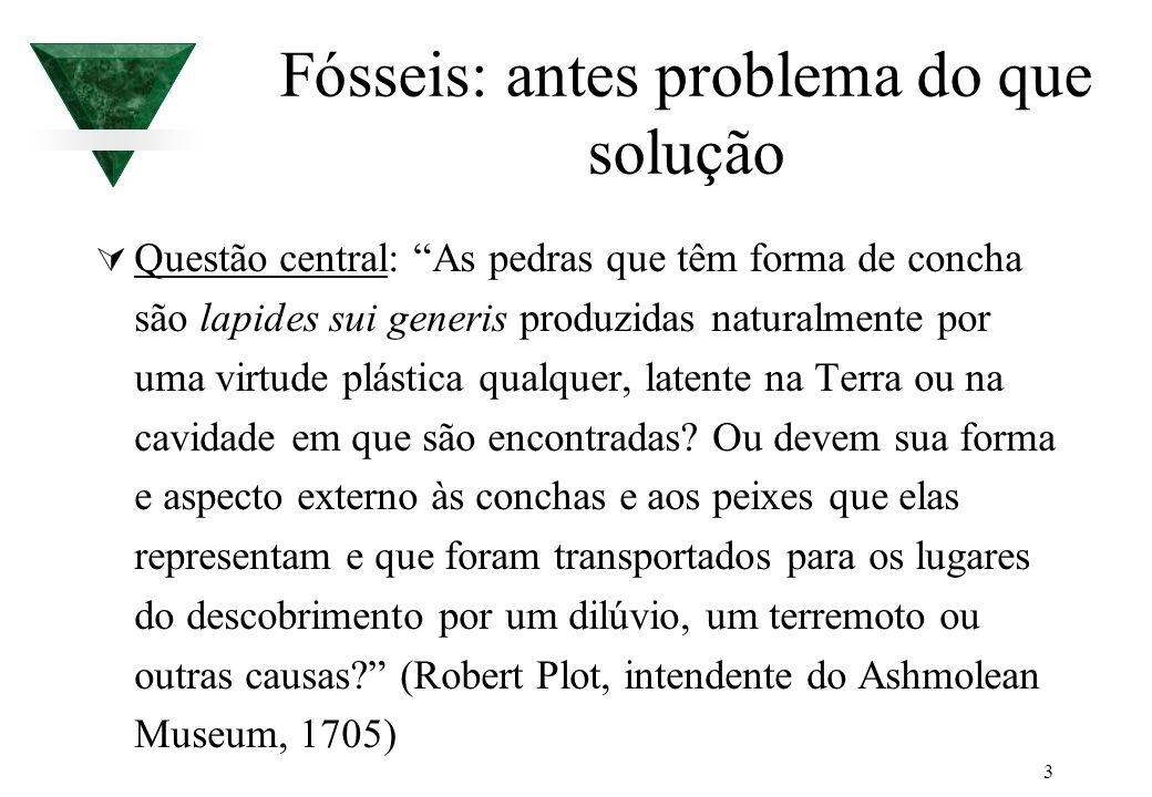 3 Fósseis: antes problema do que solução Questão central: As pedras que têm forma de concha são lapides sui generis produzidas naturalmente por uma vi