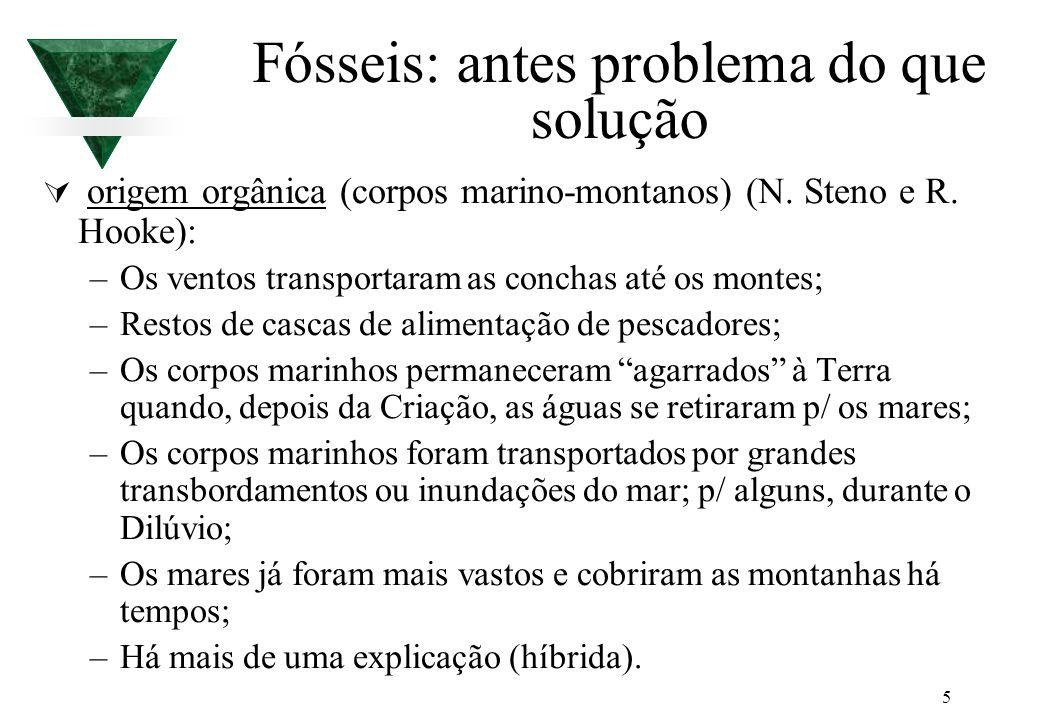 5 Fósseis: antes problema do que solução origem orgânica (corpos marino-montanos) (N. Steno e R. Hooke): –Os ventos transportaram as conchas até os mo