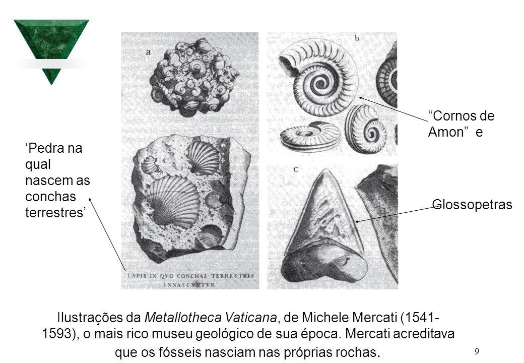 9 Ilustrações da Metallotheca Vaticana, de Michele Mercati (1541- 1593), o mais rico museu geológico de sua época. Mercati acreditava que os fósseis n
