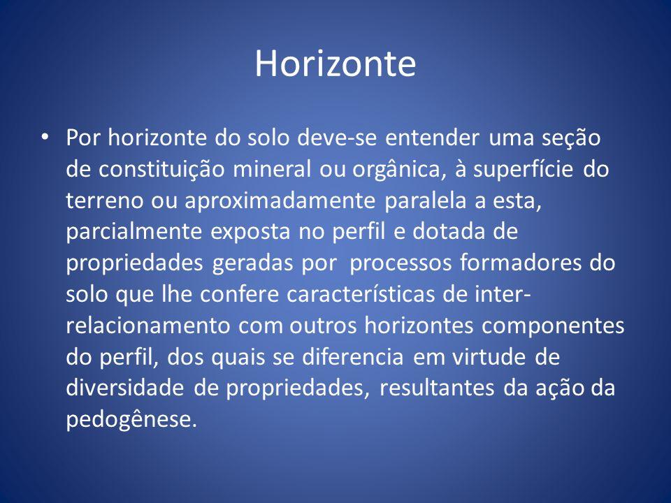 Horizonte Por horizonte do solo deve-se entender uma seção de constituição mineral ou orgânica, à superfície do terreno ou aproximadamente paralela a