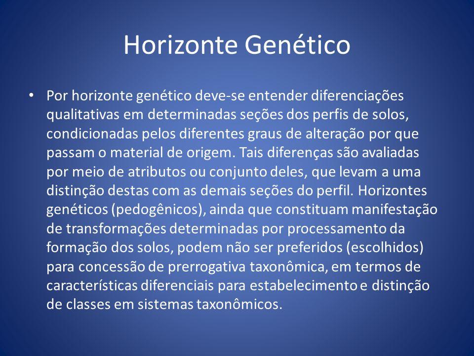 Horizonte Genético Por horizonte genético deve-se entender diferenciações qualitativas em determinadas seções dos perfis de solos, condicionadas pelos