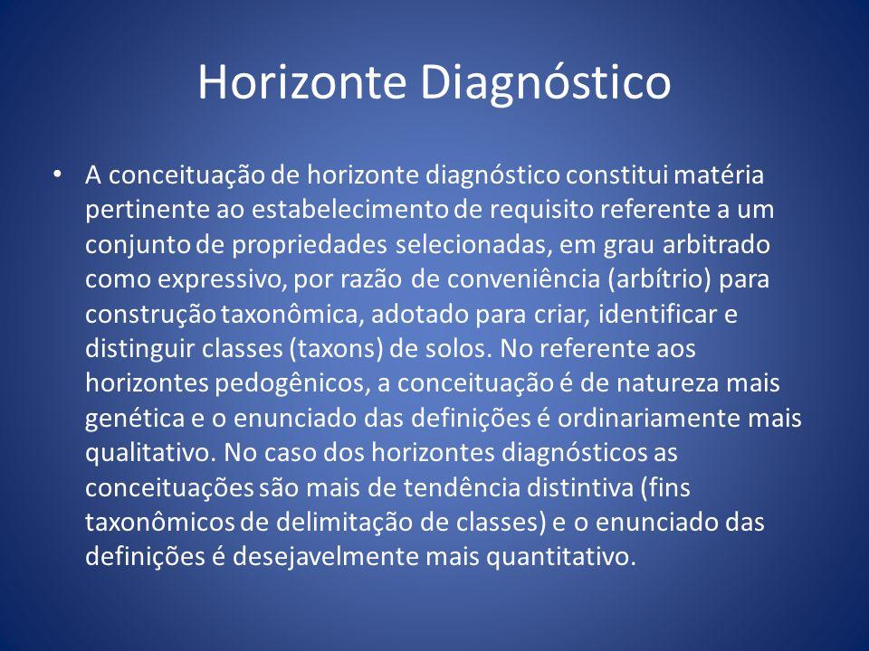 Horizonte Diagnóstico A conceituação de horizonte diagnóstico constitui matéria pertinente ao estabelecimento de requisito referente a um conjunto de