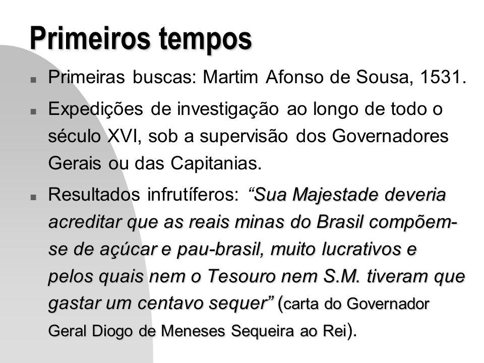 Primeiros tempos n Primeiras buscas: Martim Afonso de Sousa, 1531. n Expedições de investigação ao longo de todo o século XVI, sob a supervisão dos Go