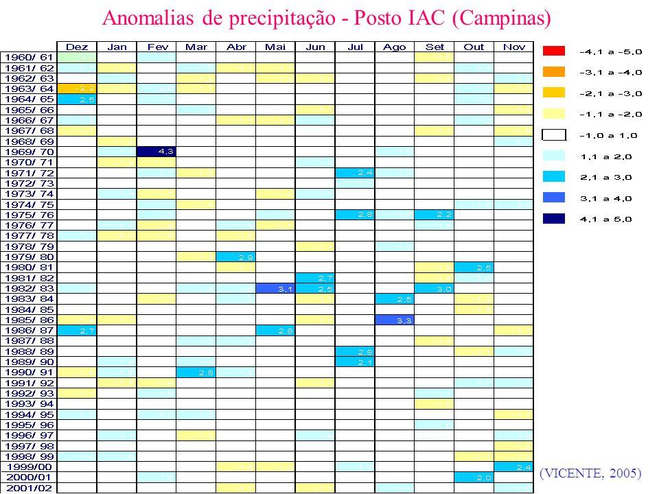 Anomalias de precipitação - Posto IAC (Campinas) (VICENTE, 2005)