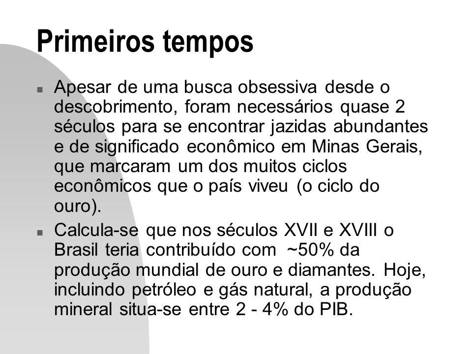 Primeiros tempos n Primeiras buscas de que se tem notícia: Martim Afonso de Sousa, 1531.