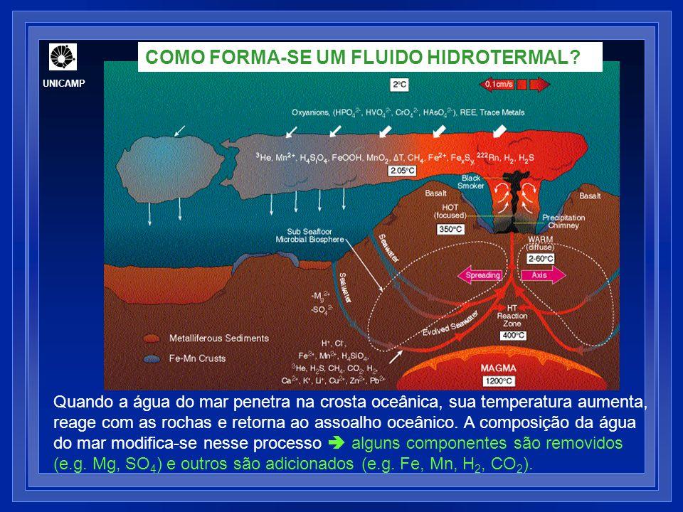 FLUIDOS EM SISTEMAS HIDROTERMAIS OCEÂNICOS ATIVOS Geologia Econômica (GE-803) UNICAMP
