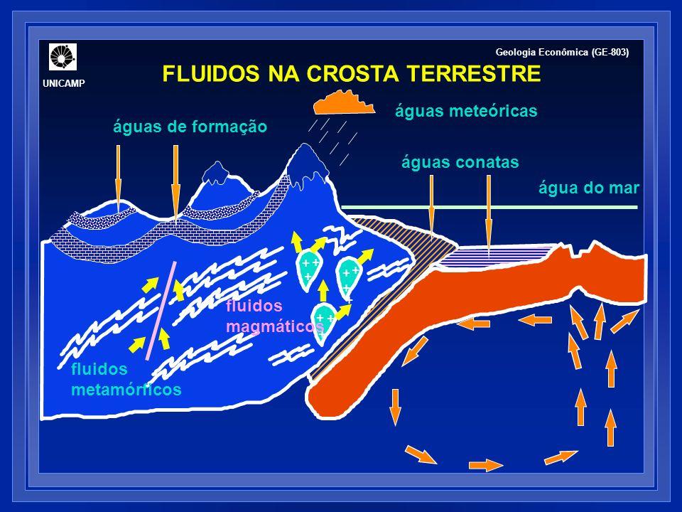 FLUIDOS HIDROTERMAIS: COMPOSIÇÃO Fonte: Barnes (1997); Lydon (1988) Geologia Econômica (GE-803) UNICAMP