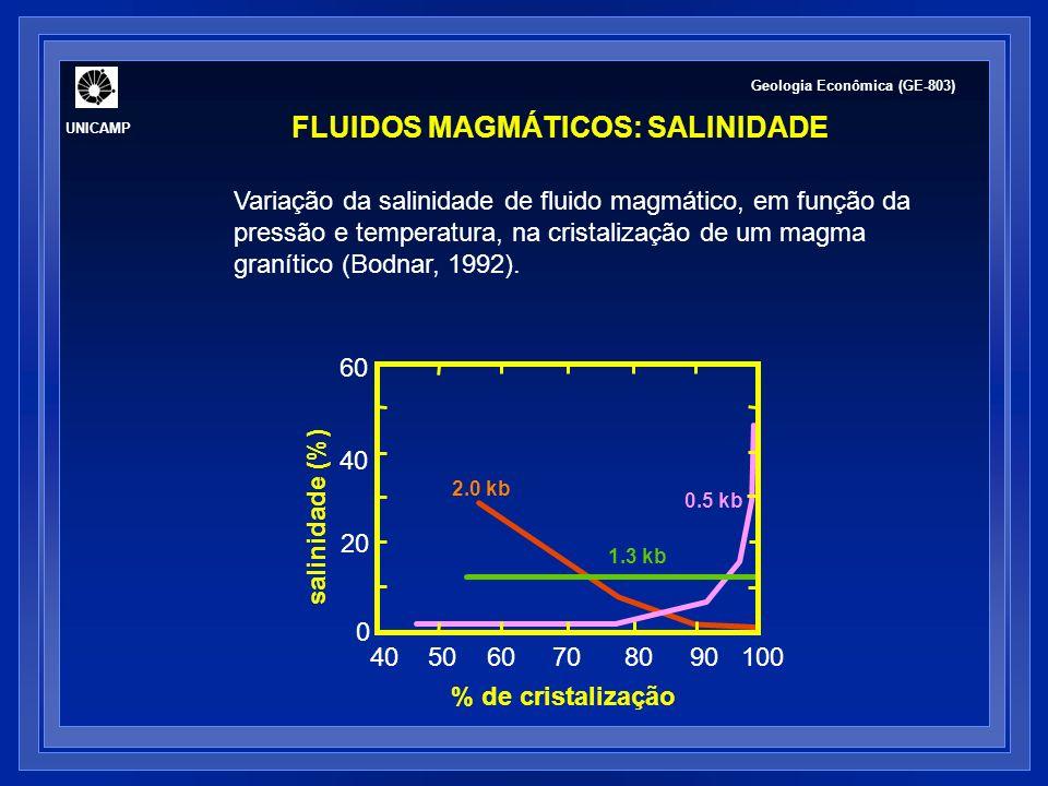 FLUIDOS MAGMÁTICOS: VARIAÇÃO DA COMPOSIÇÃO COM A PROFUNDIDADE Baker (2002) Geologia Econômica (GE-803) UNICAMP Solubilidade do CO 2 é 10 X menor do que a da H 2 O em fundidos silicáticos predomina em ambientes mais profundos.