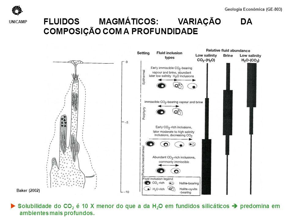 FLUIDOS MAGMÁTICOS E A CONCENTRAÇÃO DE METAIS Fatores que controlam a concentração de metais em uma fase fluida magmática: Coeficiente de partição mineral-fundido e fundido-fluido 1.