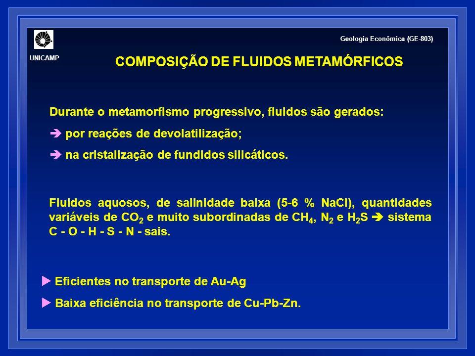 Soluções aquosas Soluções diluídas (0.2 - 0.5% solutos) a altamente concentradas (25% solutos) predominância de Na + e Cl -.