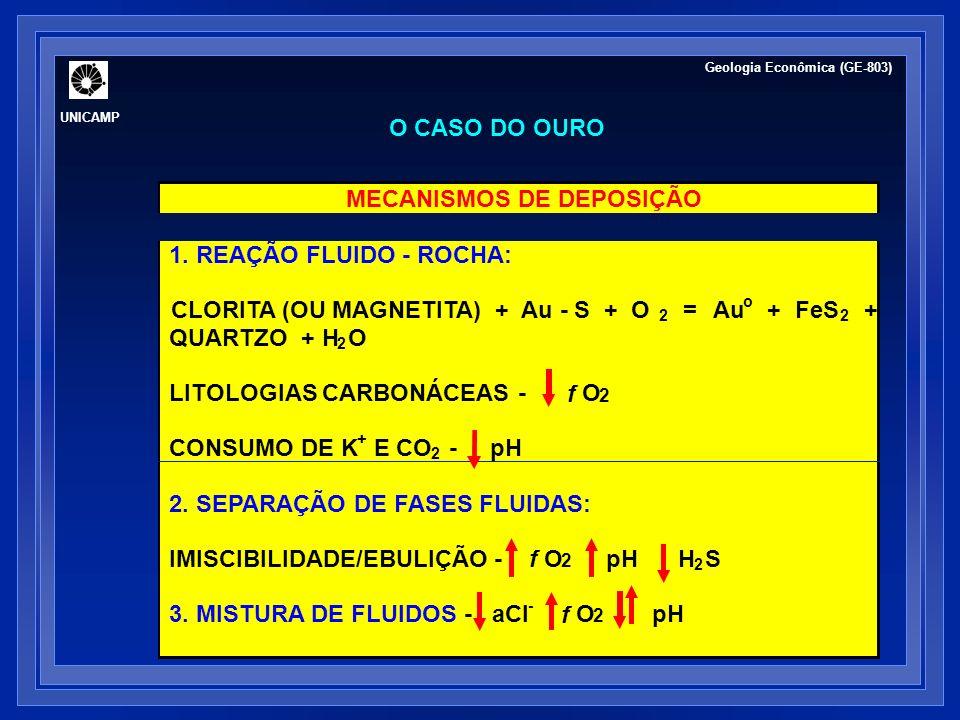 O caso do Cu, Pb e Zn Cu (s) + 1/2 O 2 + H + + 2 Cl - = CuCl 2 + 1/2 H 2 O temperatura pH O 2 aCl - 200 250 300 temperatura (°C) -8 -6 -4 -2 0 2 4 Pb (cloreto) Zn (cloreto) Cu (cloreto) Ag (cloreto) Ag (bisulfeto) 3 3 3 5 5 5 3 3: 10 3 mg/kg cloreto 5: 10 5 mg/kg cloreto log solubilidade (mg/kg) Geologia Econômica (GE-803) UNICAMP
