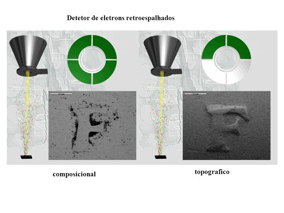 Detetor de eletrons retroespalhados composicional topografico