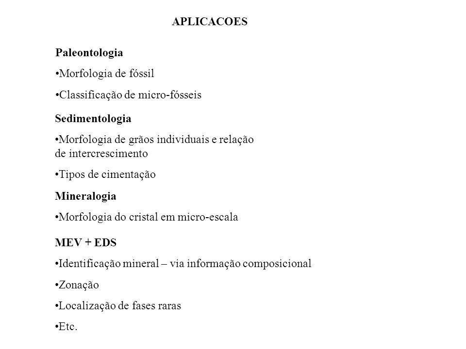 APLICACOES Paleontologia Morfologia de fóssil Classificação de micro-fósseis Sedimentologia Morfologia de grãos individuais e relação de intercrescime