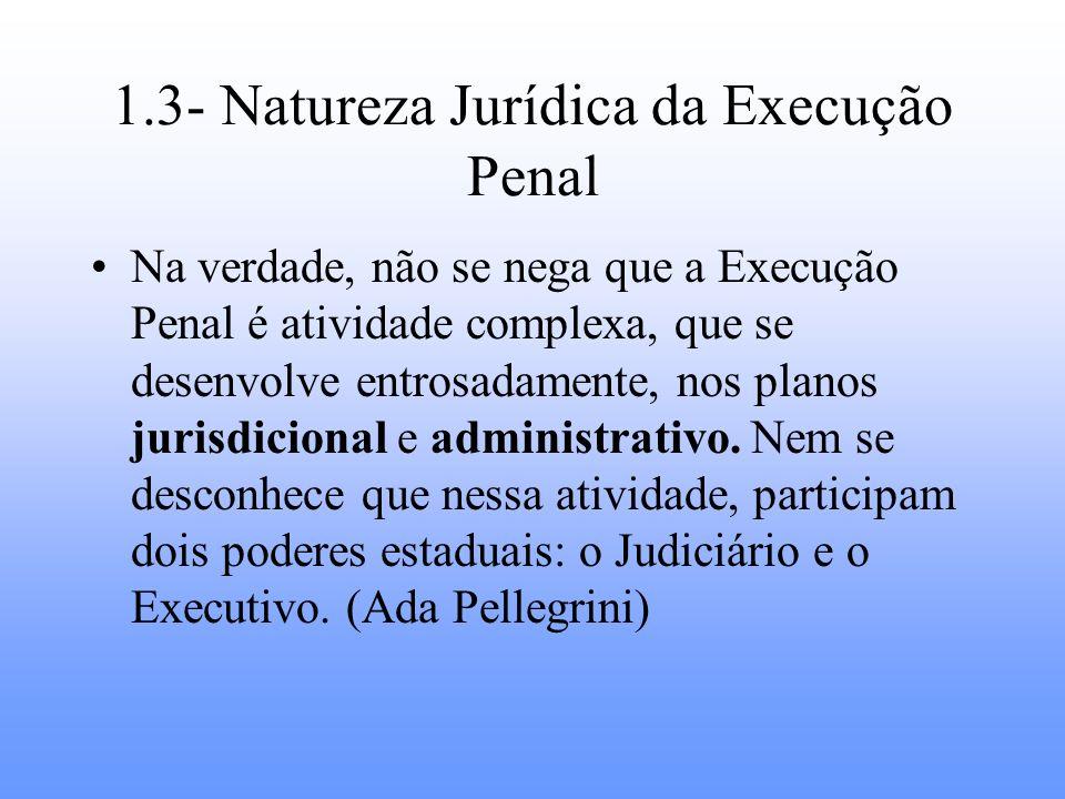 1.3- Natureza Jurídica da Execução Penal Na verdade, não se nega que a Execução Penal é atividade complexa, que se desenvolve entrosadamente, nos plan